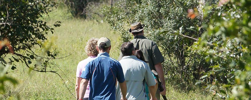 Bush walk at Idube